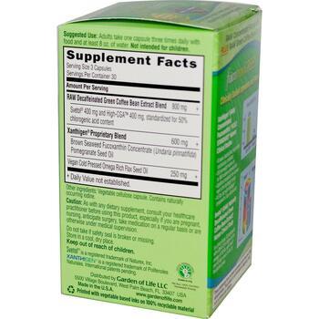 FucoThin Green 90 растительных капсул  фото состава