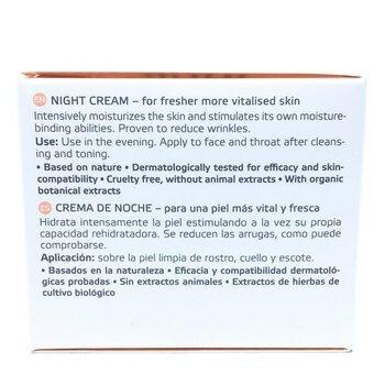 Анна Мария Увлажняющий стимулирующий ночной крем против морщин...  фото состава