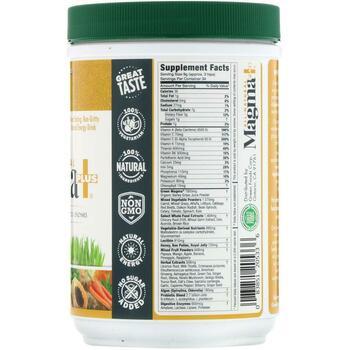 Green Foods All-Natural Magma Plus 10 300 г  фото состава