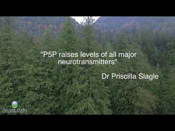 Видео обзор на П-5-Ф (пиридоксаль-5'-фосфат) 50 мг 100 таблеток