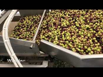 Видео обзор на Органическое оливковое масло экстра вирджин  750 мл