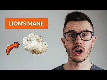 Видео обзор на Ферментированные грибы Львиная грива 60 капсул