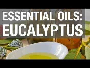 Видео обзор на органические эфирные масла эвкалипта 30 мл