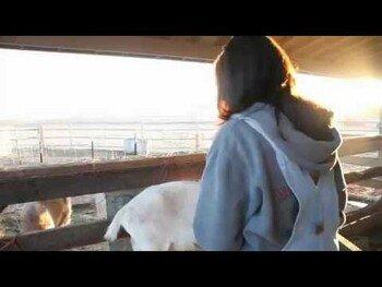 Видео обзор на Детское Мыло Козье молоко